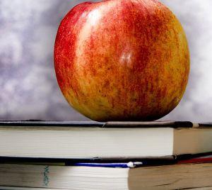 Tipps zum Schulstart